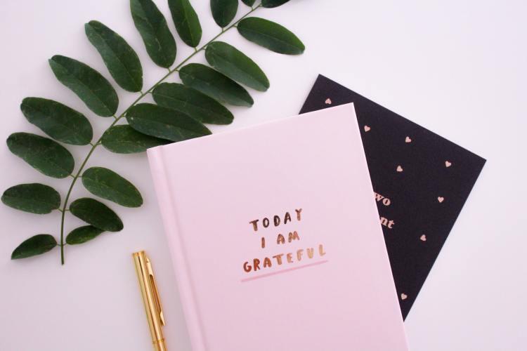 Gratitude journal and a  pen